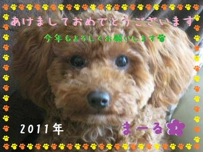 201101032_4